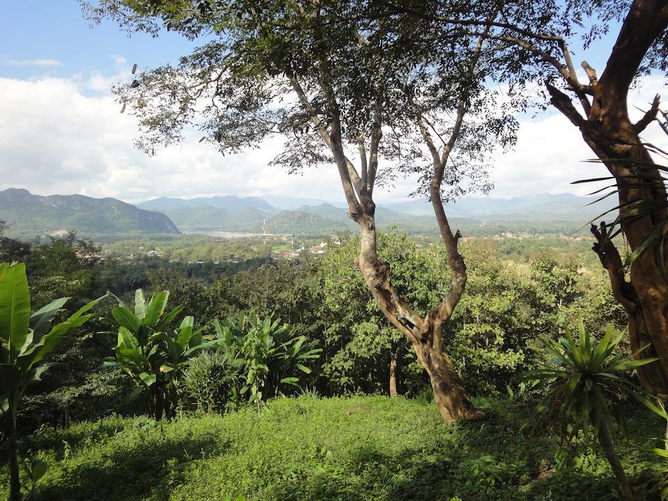 Land in Luang Prabang